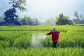 Pesticides insecticides fungicides & hericides