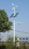 Wind-Solar Hybrid Street Light
