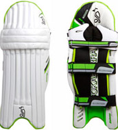 batting legguards/ pads