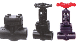 Forged carbon steel, gate, globe & check valves