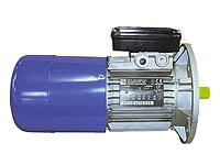 Brake motors