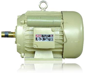 Single phase motor (tefc)